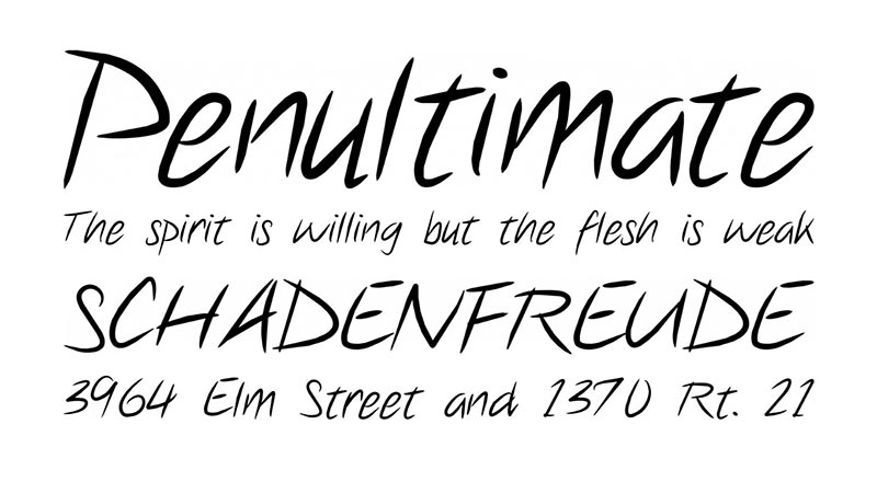 Note This Font Family Download