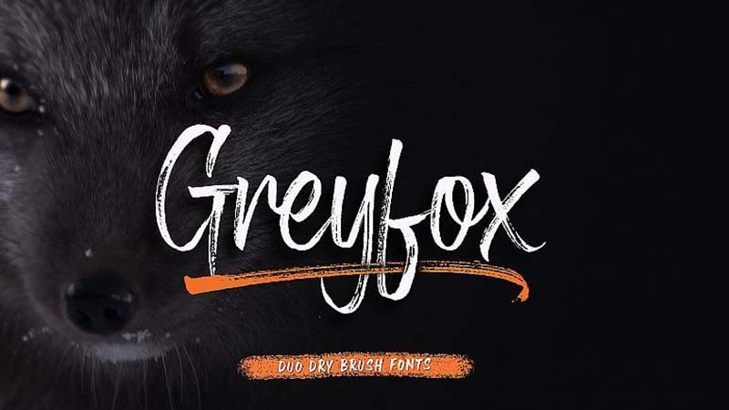 Greyfox Font Family Free Download