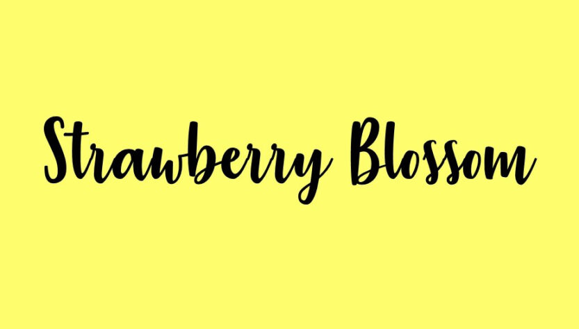 Strawberry Blossom Font Family Free Download