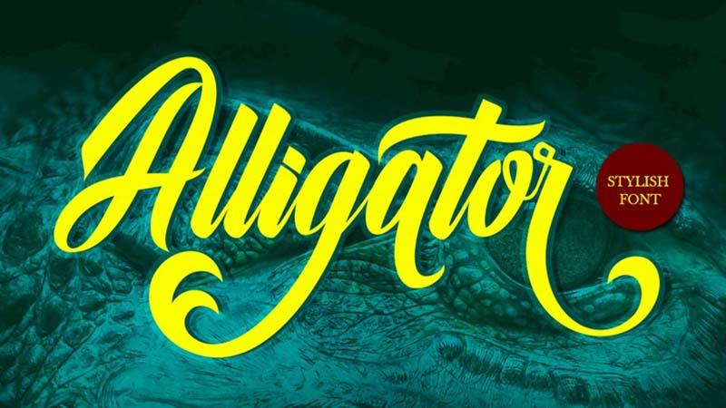 Alligator Font Family Free Download