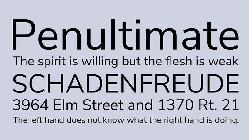 Nunito Sans Font Free Download