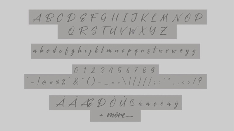 Silver Pen Font Family Download
