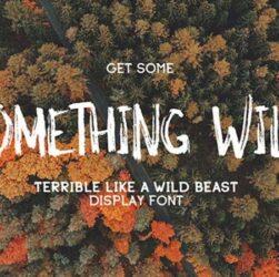 Something Wild Font Family Free Download