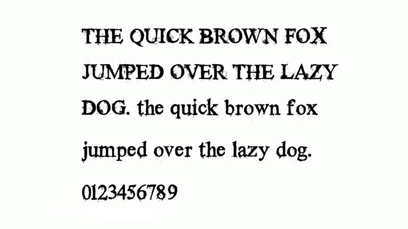 Times New Yorker Font Family Download