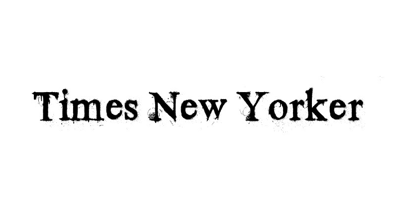 Times New Yorker Font Family Free Download