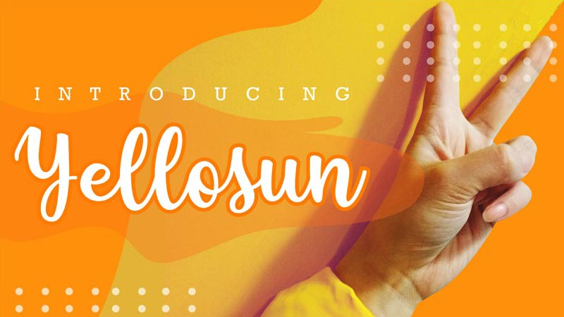 Yellosun Font Family Free Download