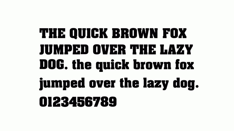 Aardvark Font Family Download