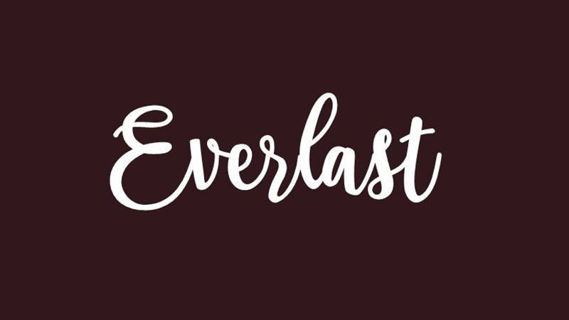 Everlast Font Family Free Download