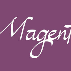 Magenta Font Family Free Download