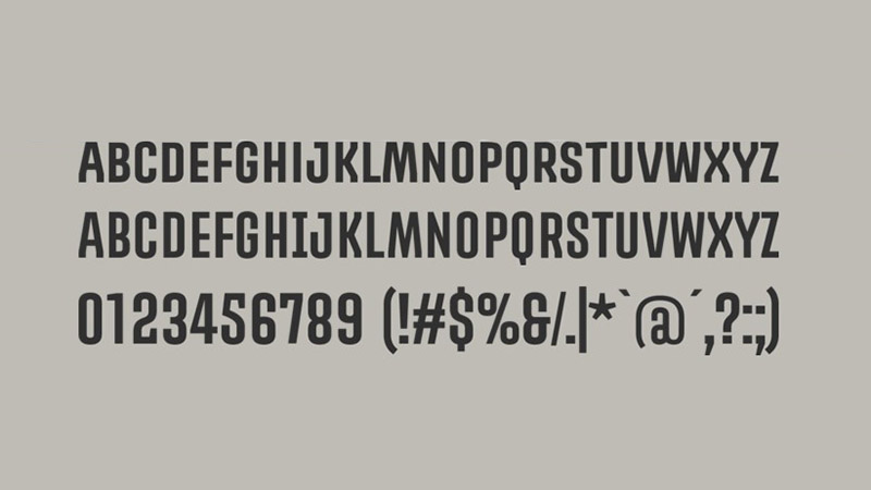 Promova Font Family Download